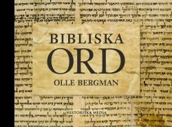 Bibliska-ord-800x594-e1360674624767